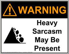 :sarcasm2